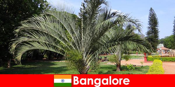 Het aangename klimaat van Bangalore het hele jaar door is een reis waard voor elke buitenlander